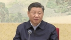 """Xi Jinping: El coronavirus es un """"demonio"""""""