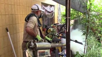 Norte de Argentina bajo alerta por incremento de casos de dengue