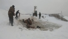Dramático rescate de yeguas atrapadas en el hielo