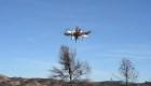 Dronecoria: Drones para reforestar a bajo costo