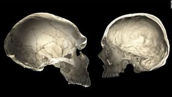 Se descubre misteriosa 'población fantasma' de humanos antiguos