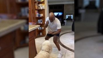 """Mike Tyson """"entrena"""" con su perro"""