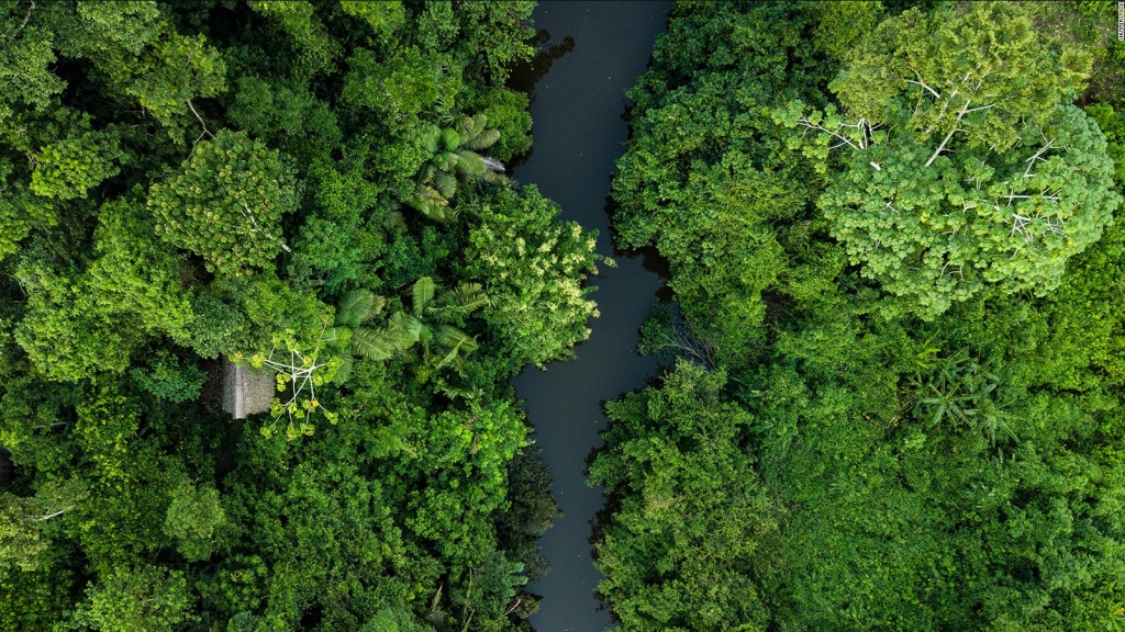 Retro: El mundo celebra el Día de la Tierra