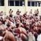 Imágenes de cárcel en El Salvador y más notas del covid-19