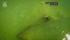 Argentina: descubren un buque hundido