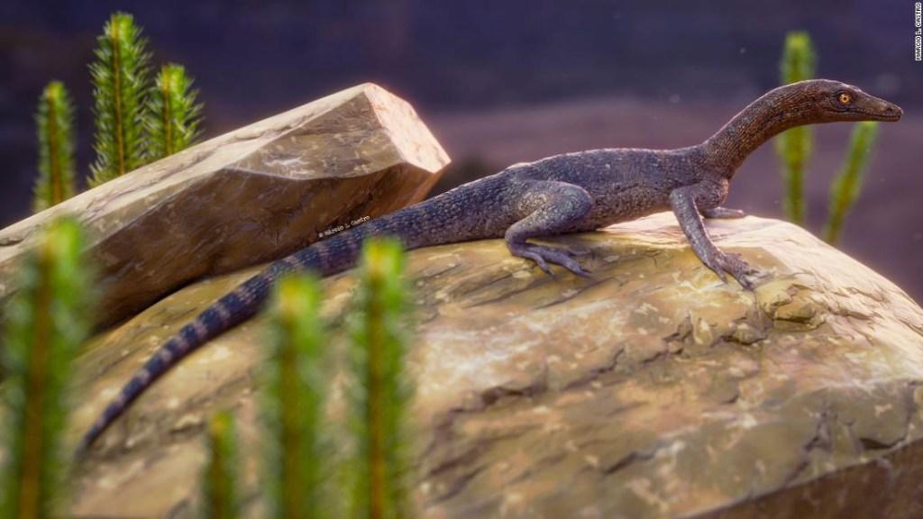 Nuevo fósil que lleva el nombre del personaje de 'El señor de los anillos' está relacionado con misteriosos reptiles
