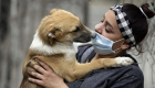 ¿Podemos contraer el virus por nuestras mascotas?