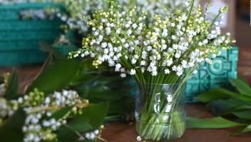 Los 5 regalos más buscados para el Día de la Madre