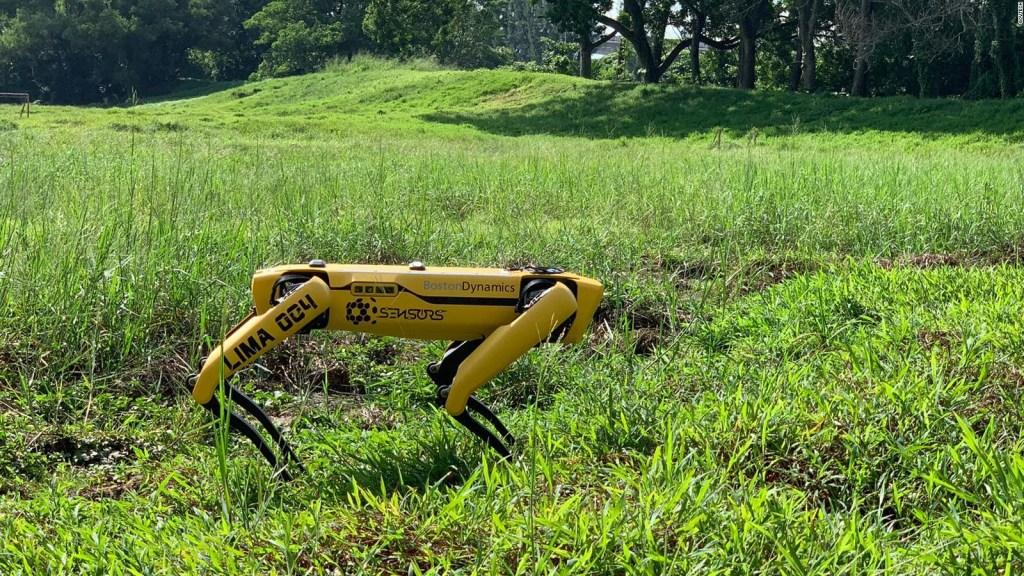 Spot, el perro robótico para mantener la distancia física
