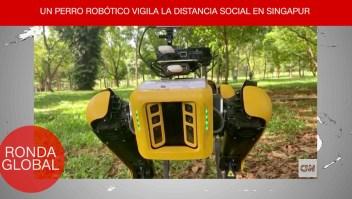 Covid-19: perro robot vigila distanciamiento social y más