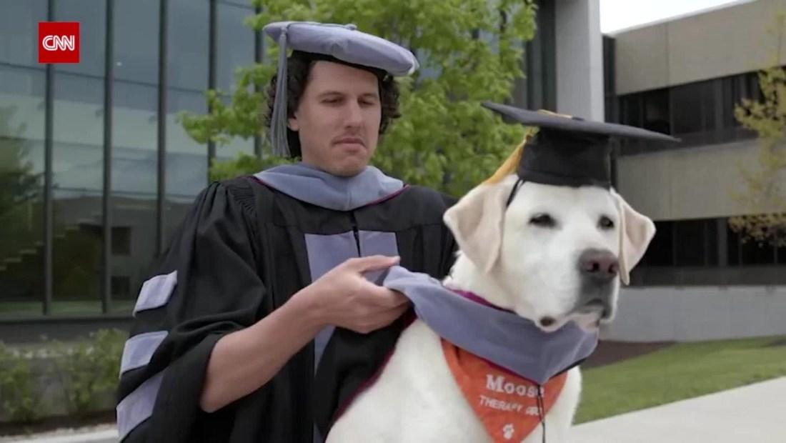 Moose, el perro que obtuvo un título universitario