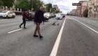 En Rusia, unos patos reciben ayuda para cruzar la calle