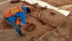 México halla restos de mamut en obra del nuevo aeropuerto