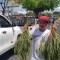 Crisis de salud en Nicaragua provoca la compra de remedios en las calles
