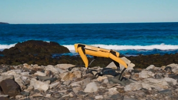 Spot, el famoso perro robot, ya está a la venta