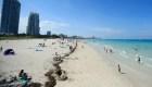 Covid-19 repunta en Florida: van más de 106.000 casos