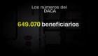 Algunas cifras sobre los beneficiarios de DACA