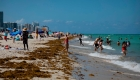 Florida va camino de ser el epicentro del coronavirus en EE.UU., según modelo