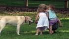 ¿Por qué es importante la relación entre niños y perros?