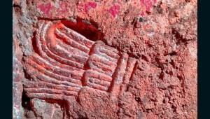 Autoridades descubren ruina prehispánica bajo edificio de la capital mexicana