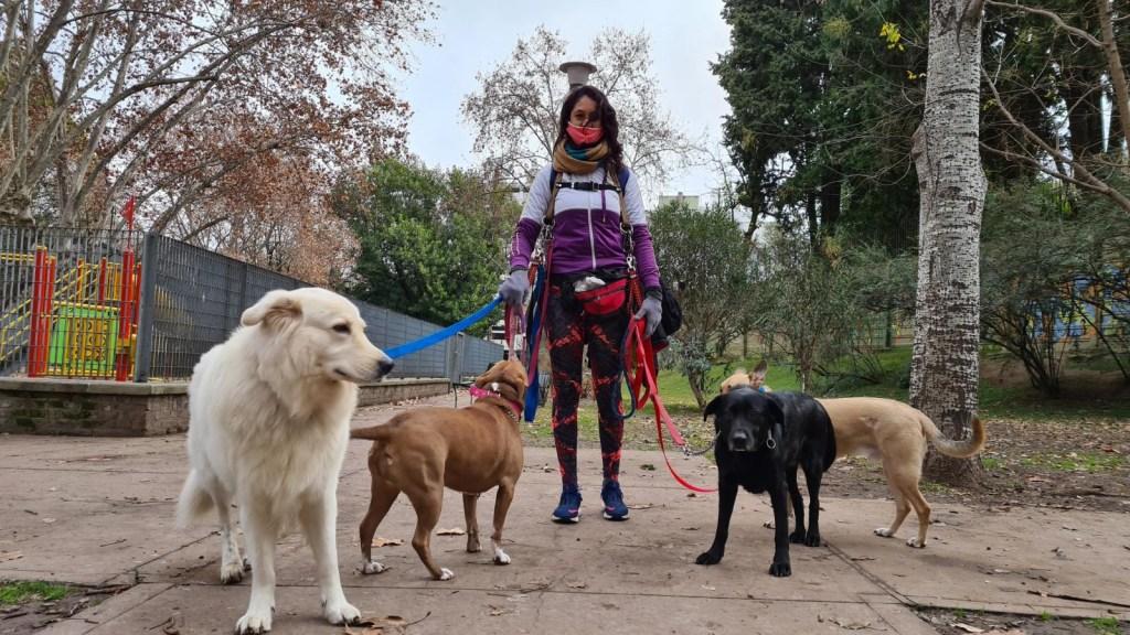 Vuelven los paseadores de perros en Buenos Aires