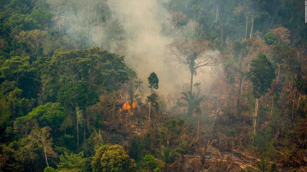 El Amazonas, un eje de incendios y manifestaciones