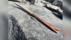 Encuentran en Noruega flechas de más de 6.000 años