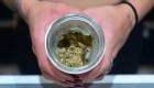¿Ayudaría la marihuana en el tratamiento del covid-19?