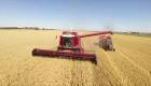 ¿Por qué está en paro el sector agropecuario en Argentina?
