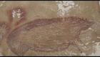 Hallan pintura más antigua de la que se tenga registro