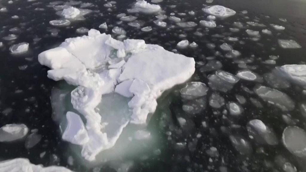 Estudio alerta sobre deshielo récord en la Tierra
