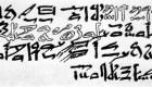 La colchicina se usa desde los tiempos del papiro egipcio