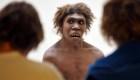Extinción neandertal: posible explicación del misterio