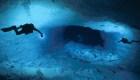 Increíbles fotos muestran la vida bajo el agua
