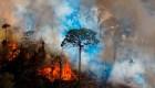 Inédito: el Amazonas emite más gases de los que absorbe
