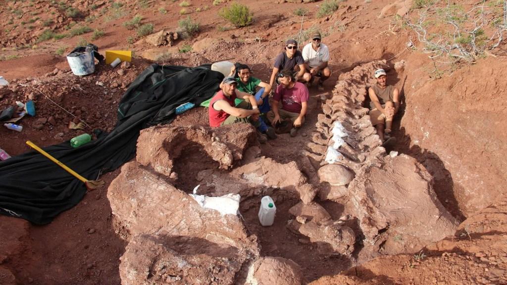 Hallan fósil de titanosaurio en Argentina