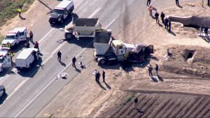Accidente de tránsito deja varios muertos California