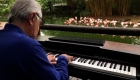 Pianista toca el piano para animales