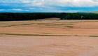 ¿Cómo afecta la agricultura industrializada al planeta?