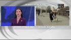 Un perro le roba el micrófono a una periodista en vivo