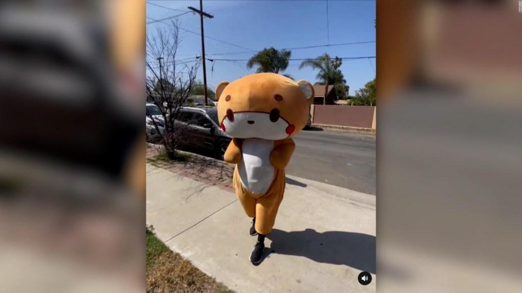 De Los Ángeles a San Francisco, vestido de oso