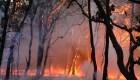 Aumento de temperatura en México causa catástrofes irreversibles