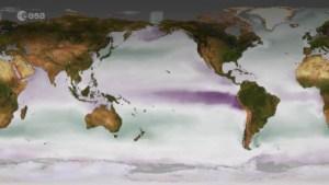 Calentamiento global: el agua de mar se vuelve más ácida