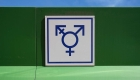 Una mirada histórica a la transexualidad