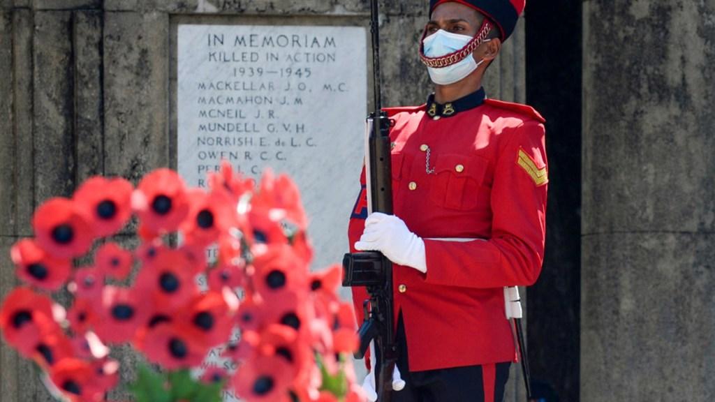 ¿Por qué la familia real británica utiliza una amapola roja como insignia?