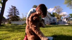 Así rescata un niño a su perro que se asfixiaba