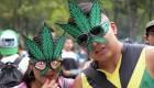El ABC para consumo de marihuana en México