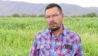 La importancia del voto rural en las elecciones de México