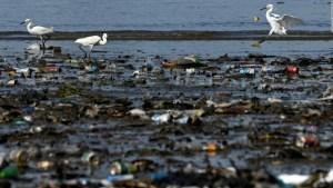 Los países que más desperdicios plásticos generan