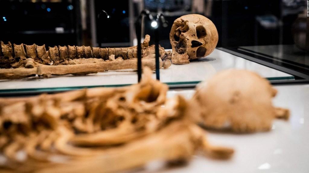 El ADN reveló un secreto de familia en estos restos vikingos